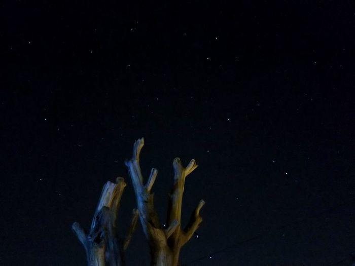 The Stars Nokia8Sirocco Nightphotography Nokiaprocam Long Exposure 4secs Stars Astronomy Black Background Star - Space Sky Close-up Constellation HUAWEI Photo Award: After Dark