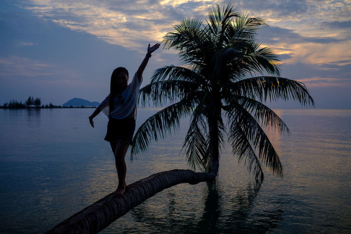 The bent palm tree. Young Woman Young Adult Water Vacations Tree Travel Destinations Tranquility Tranquil Scene Sunset Standing Sky Sea Scenics Real People Palm Tree Outdoors One Person Nature Lifestyles Leisure Activity Horizon Over Water Cloud - Sky Bent Beauty In Nature Beach