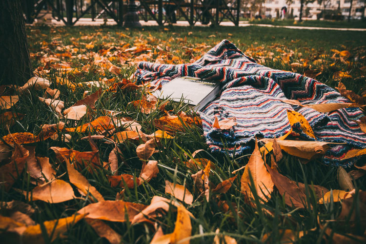 Book With Mat On Grassy Field During Autumn