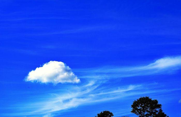 Korea Photos Clouds And Sky Autumn Blue Sky Streamzoofamily Treepark Cloudpark Skypark Blue Wave