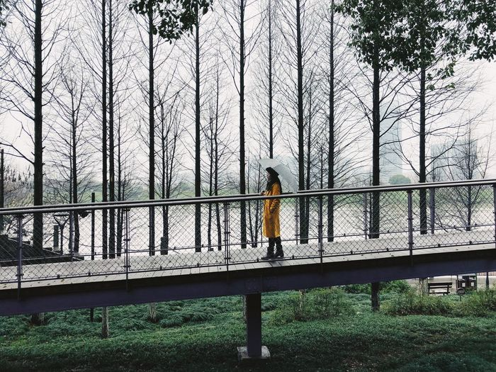 Riverside Beauty In Nature One Person Railing Nature Day Tree Plant Lifestyles Architecture Outdoors Standing Bridge Walking Connection