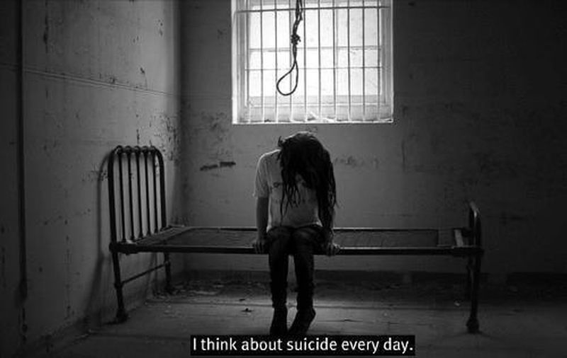 """suicide every day"""