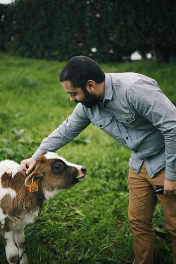 Side view of man stroking calf on field
