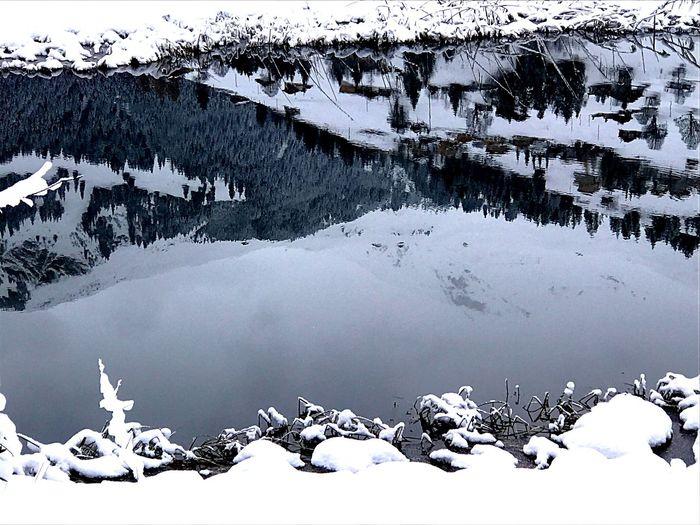 Global Warming Beauty In Nature Nature Frozen Cold Temperature Winter Snow Lenk Switzerland