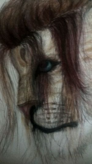 Colored Pencil Drawing Fantasy Panthera People
