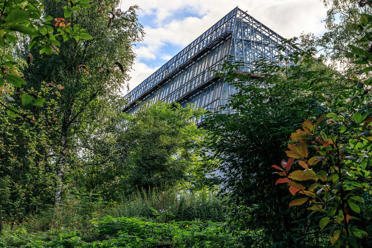 Botanical garden in Tomsk city. Architecture Building Building Exterior Built Structure Day Foliage Glass Architecture Green Color Growth Low Angle View No People Outdoors Plant Siberia Sky Tree