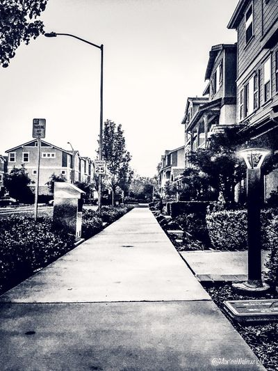 B&W Suburbs Dublin Ca Architecture Outdoors Building Exterior Built Structure No People Day City Clear Sky Sky Tree Marina Wainwright Tranquility Live For The Story Visual Feast The Street Photographer - 2017 EyeEm Awards The Great Outdoors - 2017 EyeEm Awards The Architect - 2017 EyeEm Awards The Photojournalist - 2017 EyeEm Awards EyeEmNewHere