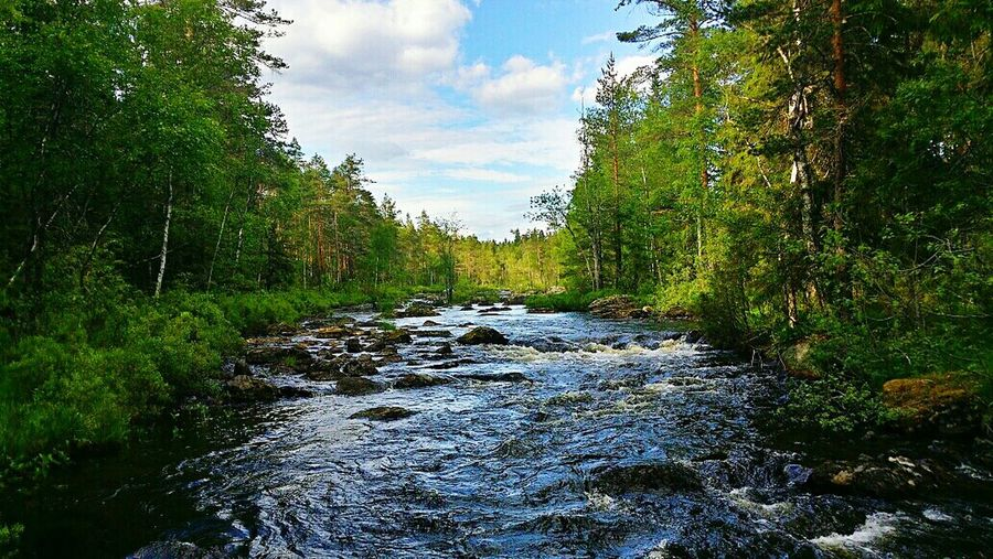 Wonderful nature Sweden has to offer. Summer Eyem Best Shots Water Water_collection EyeEm Gallery Sweden OpenEdit Nature World HDR