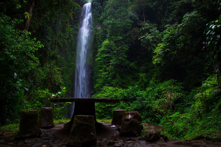 putuk truno Travel Destinations Travel Green Gogreen SaveNature Landscapephotography Longexposures Putuktruno Putuktrunowaterfall Waterfall Long Exposure Motion Green Color Tree Nature Beauty In Nature No People Water Outdoors Scenics