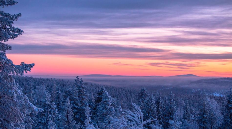 Lapland Finland -30 Sunset Nature Beauty In Nature Tree Winter Scenics Tranquil Scene Sky Landscape No People Cold Temperature Finland Lapland Canonphotography Outdoors Snow Cloud - Sky Day
