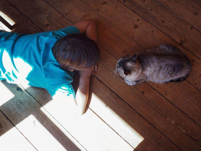 High angle view of boy with cat on hardwood floor