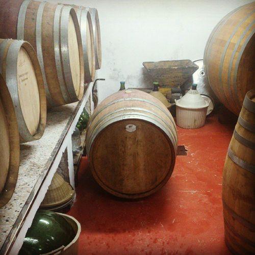 Barrels Wine Casebianche