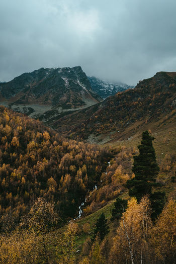 Autumn Autumn colors North Caucasus Russia Autumn Beauty In Nature Change Cloud - Sky Day Environment Idyllic Land Landscape Mountain Mountain Peak Mountain Range Nature No People Non-urban Scene Outdoor Photography Outdoors Overcast Plant Remote Scenics - Nature Sky Tranquil Scene Tranquility Tree