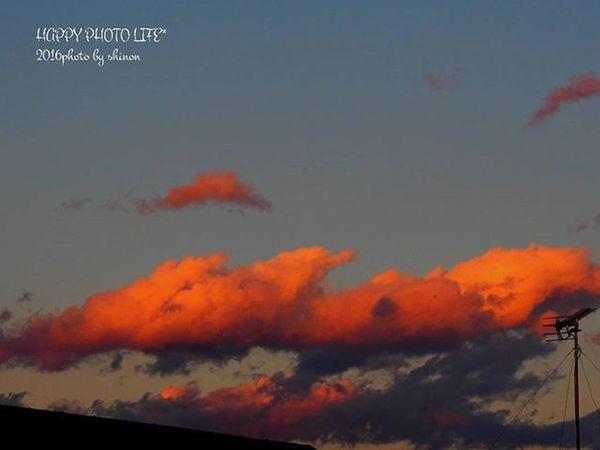 * 先日の夕空 * Goodnight カコソラ 夕暮れ 日没後 空 グラデーション 空photo Cloud Sky_cloud Sunset Sky Sky View S_shot Gradation Evening Sky Olympus Olympusomd Om_d E_M1 ダレカニミセタイソラ ファインダー越しの私の世界 写真撮ってる人と繋がりたい 写真好きな人と繋がりたい Shinon_sky