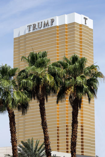 Palm trees in front of the Trump International Hotel Las Vegas Golden Las Vegas Trump Hotel USA Architecture Building Building Exterior Built Structure Clear Sky Day Gilded Gold Colored Hotel Low Angle View No People Palm Leaf Palm Tree Plant Resort Sky Sunlight Tall - High Tree Trump Wall - Building Feature