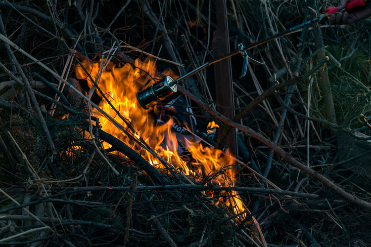 Fire Heat - Temperature Fire - Natural Phenomenon Flame Burning Nature Forest Land Glowing Bonfire Motion Plant Blurred Motion Outdoors Grass Tree Day Orange Color Close-up Campfire