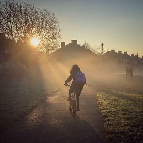 Man riding bicycle at sunset