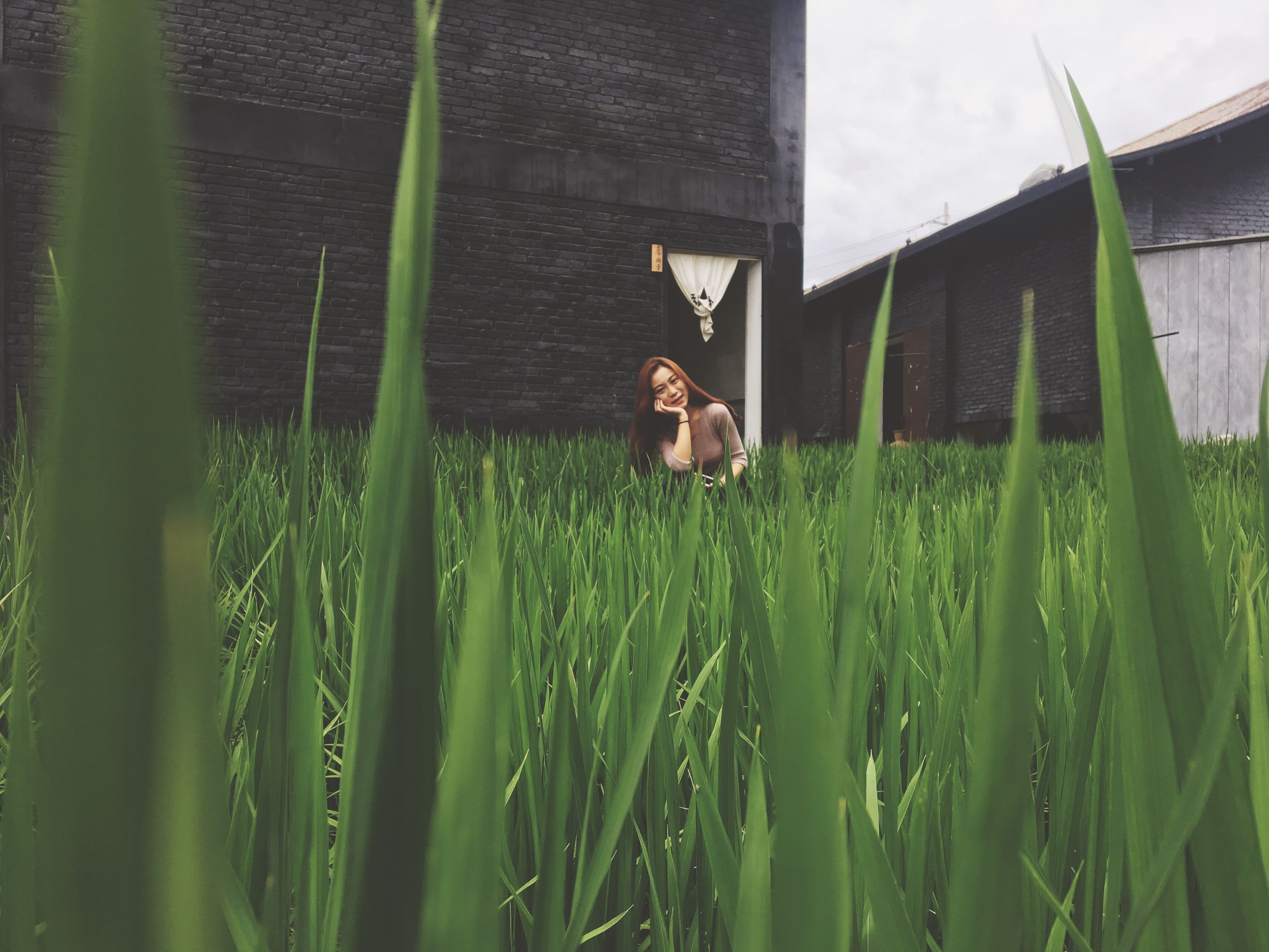 grass, green color, growth, field, building exterior, nature, built structure, architecture, outdoors, day, one animal, plant, real people, one person, animal themes, mammal, beauty in nature, sky, close-up, people