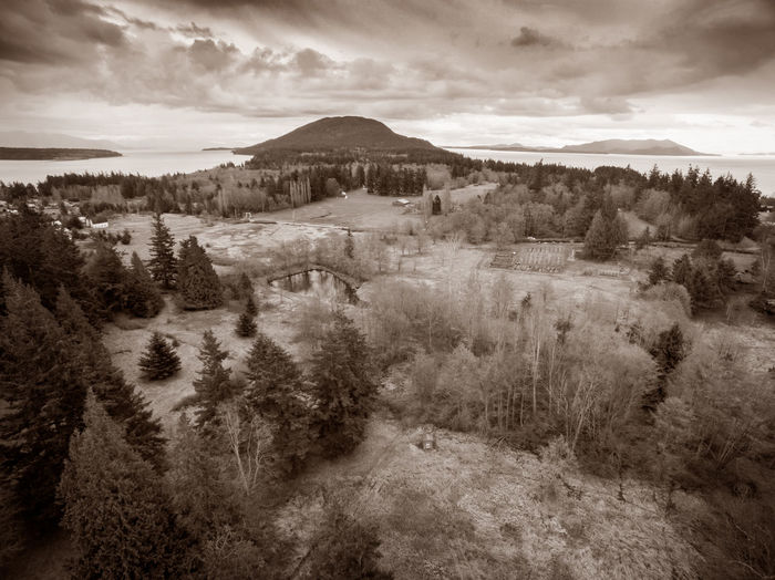 Lummi Island, Washington from the Air. A drone view of one of the jewels of the San Juan Islands. Aerial View Beauty In Nature Black And White Cloud - Sky Day Drone  Forest From Above  Landscape Lummi Island Monochromatic Mountain Nature No People Outdoors Pacific Northwest  Puget Sound San Juan Islands Scenics Sepia Sky Tree Trees Washington Washington State