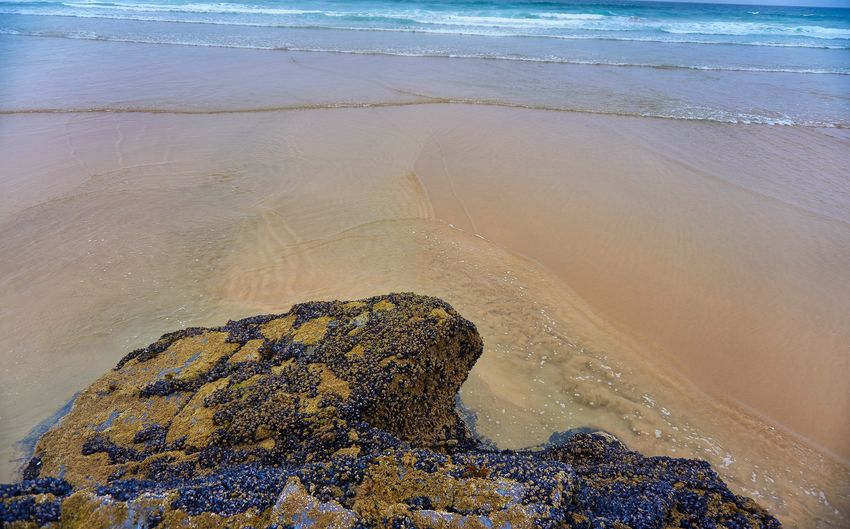 Aquatic Sport Beach Beauty In Nature Day High Angle View Land Motion Nature No People Outdoors Rock Rock - Object Sand Scenics - Nature Sea Solid Sport Tranquil Scene Tranquility Water