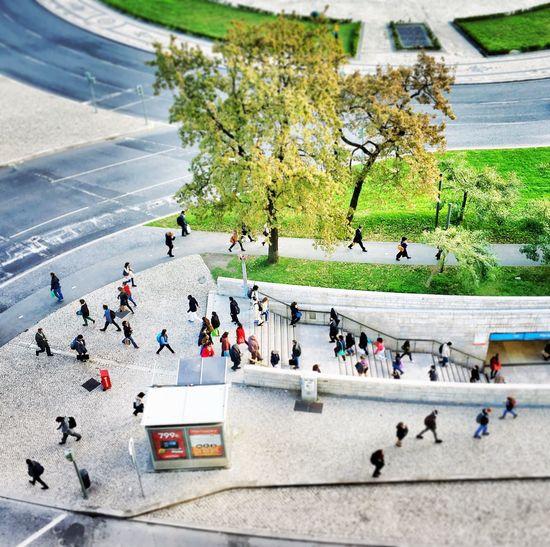 Commuters Large