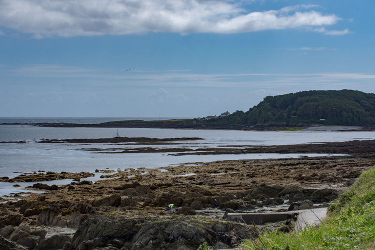 Beach Beauty In Nature Bird Cloud - Sky Day Grass Horizon Over Water Looe Nature No People Outdoors Scenics Sea Sky Tranquil Scene Tranquility Water