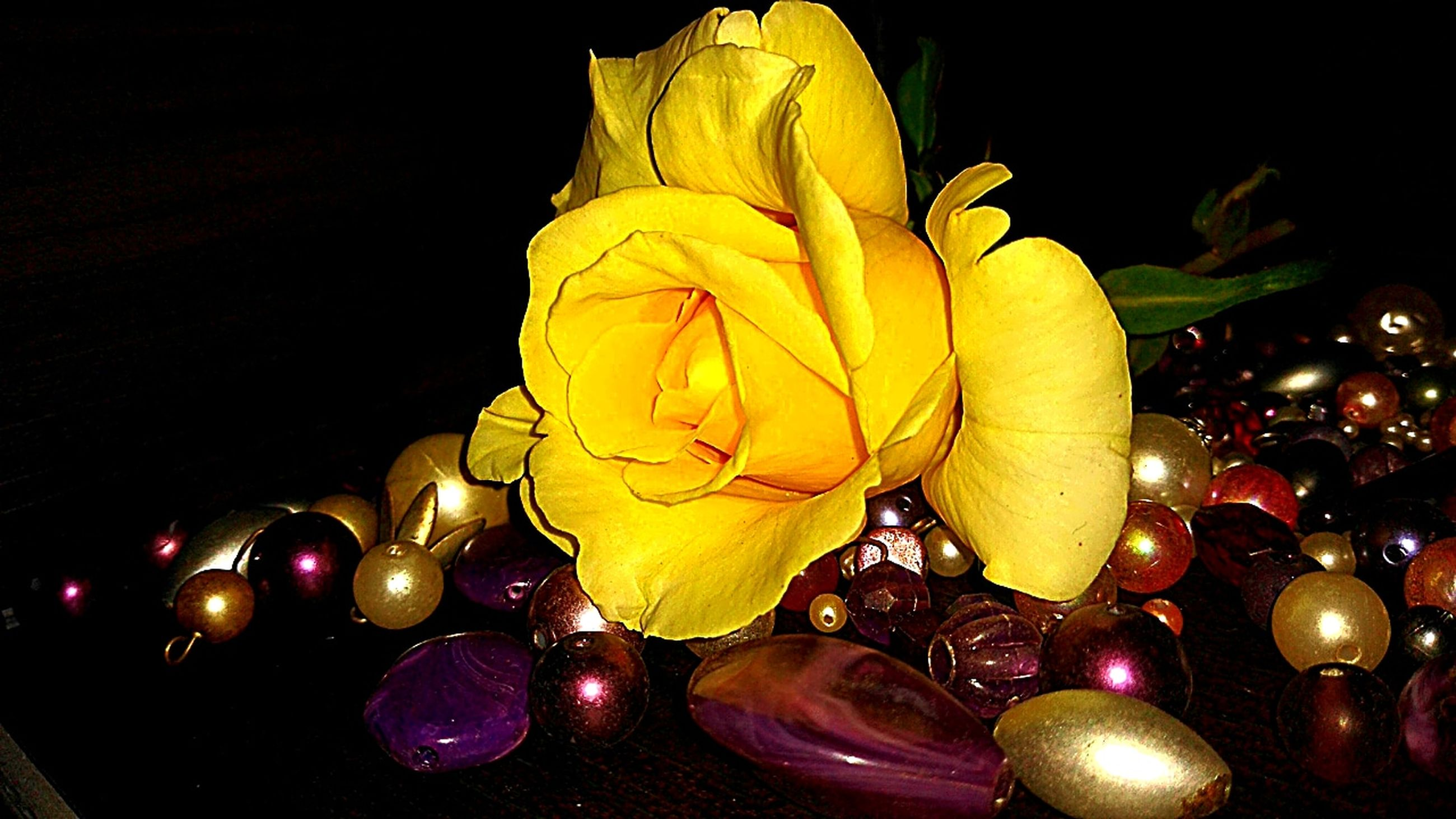 yellow, night, no people, indoors, close-up, decoration, studio shot, black background, illuminated, freshness, plant, celebration, flowering plant, flower, glowing, low angle view, lighting equipment, nature, religion