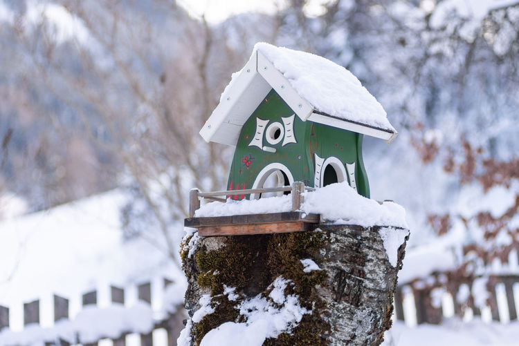 Homemade, green wooden bird's feeder in winter, under snow. blurred background.