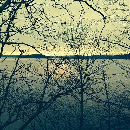 Trees in my way! Fallretreat Cymfr13 Thenorth Canada ig_canada ontario sunset scenic