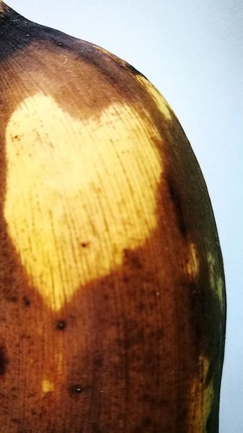 Close-up No People Love ♥ Indoors  Food Fruit Banana Fruit 3XSPUnity
