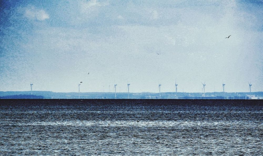 Windcraft Panorama The Environmentalist – 2014 EyeEm Awards Summer In Denmark