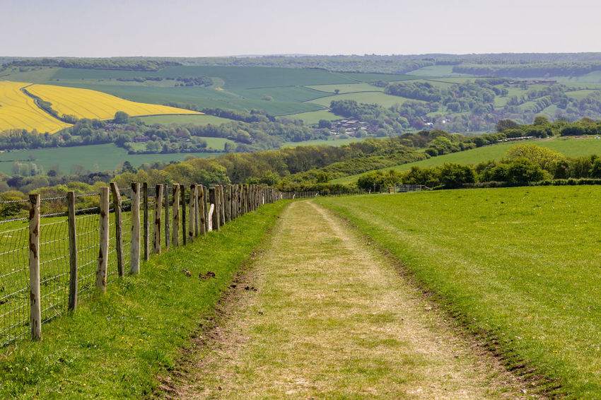 A pathway through countyside in the South Downs, in Sussex South Downs Agriculture Barrier Beauty In Nature Boundary Environment Fence Field Grass Green Color Idyllic Land Landscape Nature No People Outdoors Pathway Plant Plantation Rural Scene Scenics - Nature Sky Sussex Tranquil Scene Tranquility