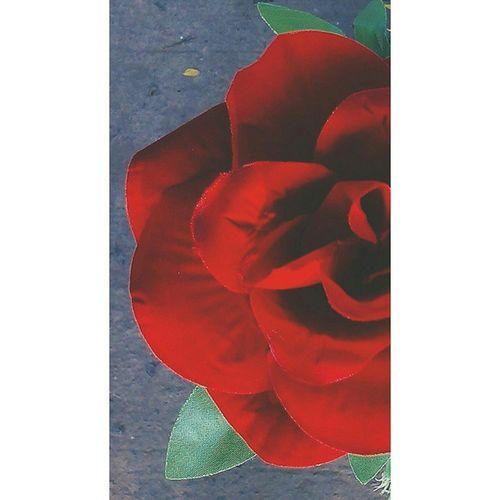 Vscocam Rosé Flowergram Flowerlover crafted artificial flower flowerporn vscophile vscoindia vscofiltre HB2 instaindia igdaily ig_flower igaddict igersworldwide jj_mobilephotography macroshot macro macrogram jj_macro nothingisordinary nofilter htcdesirex jabalpur