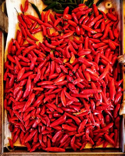 Red Hot Red Chili Pepper Turmeric  Pepper Dried Food Market Stall For Sale Stall Chili Pepper Chili  Ground - Culinary Cardamom Dried Fruit
