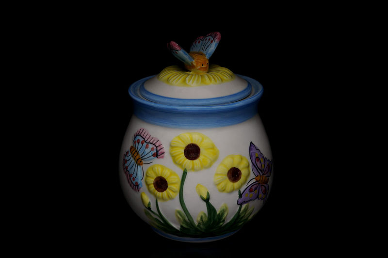 Black Background Butterfly Close Up Container Floral Pattern Flower Light Box Light Tent Low Key Pottery Still Life Vase