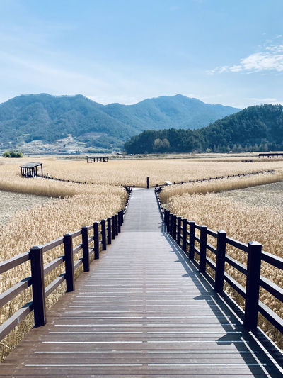 View of wooden walkway leading towards wetlands and mountains