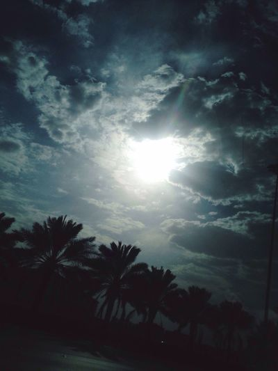 The Week On EyeEm High Angle View Silhouette Sun Beauty In Nature