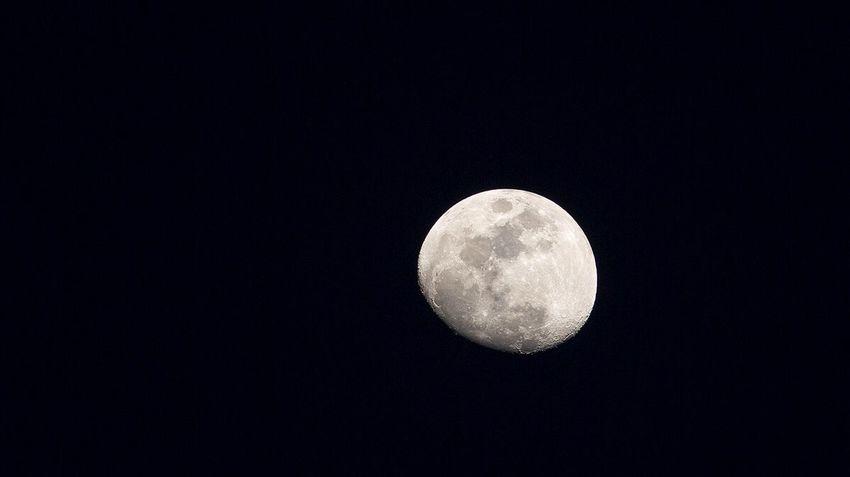Night Half Moon Moonlight Moon Night Photography Nightphotography Fukuoka-shi Fukuoka Fukuoka,Japan Today's Pic