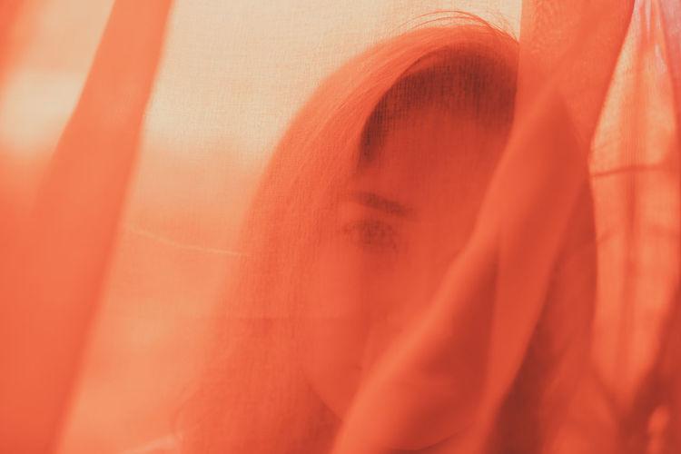 Full frame shot of orange plant
