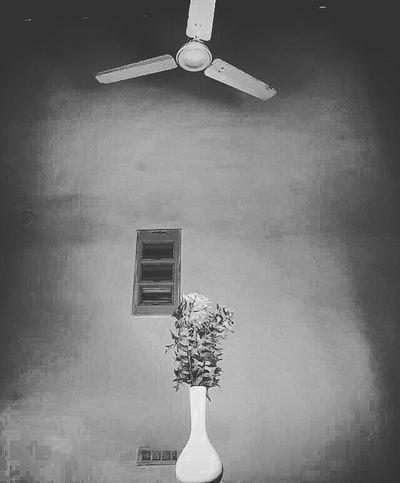 Simple Moment Simple Flowerporn StillLifePhotography Stillness In Time Stillshoot Still Life Product Photography EyeEm Best Shots - Black + White Black & White