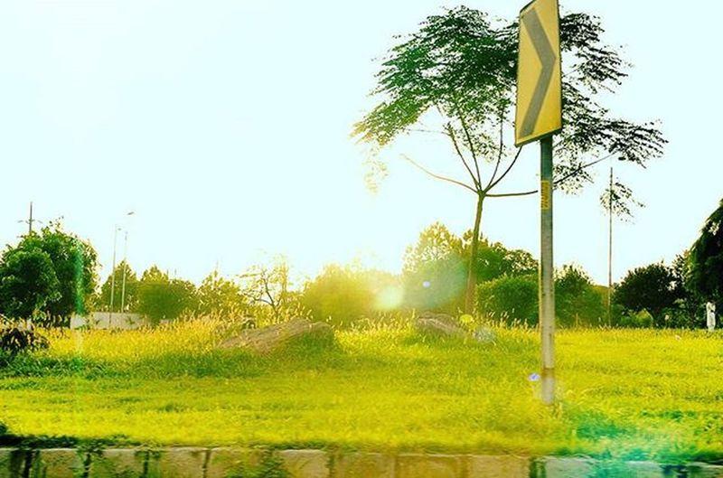 Please do not feed the fears....✋✋✋✋ BeautyOfPakistan Pakistan Paki Nature Naturelover Beauty Travelers Tourism Beautyfulpakistan Sunset Lakeviewpark Isbcity Travelpakiatan Ig_pakistan Trees Grass Im_pakistan Instameetpakistan Discovringpakistan Wheninpakistan WonderfulPakistan Vascopakistan Shutterpak Picturepakistan Ig_pakistan igrspakistanvascopakistan northenpakistan instanatureamazingartofearth