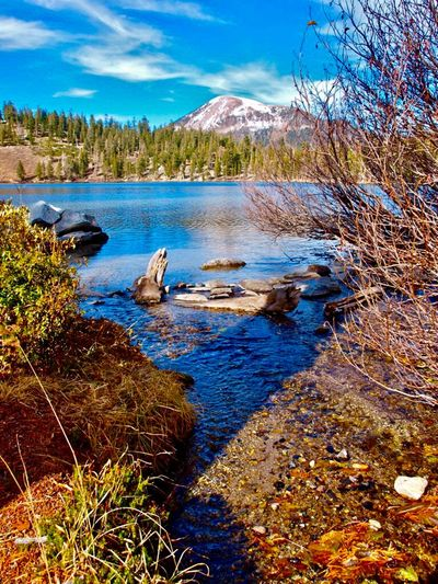 Mammoth Mountain Lake George Mammoth Lakes, CA Mountains Eastern Sierras Water Plant Tree Beauty In Nature Nature Tranquility Tranquil Scene Scenics - Nature