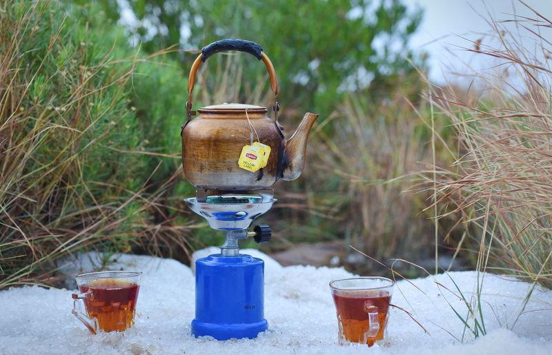 snow tea Tea