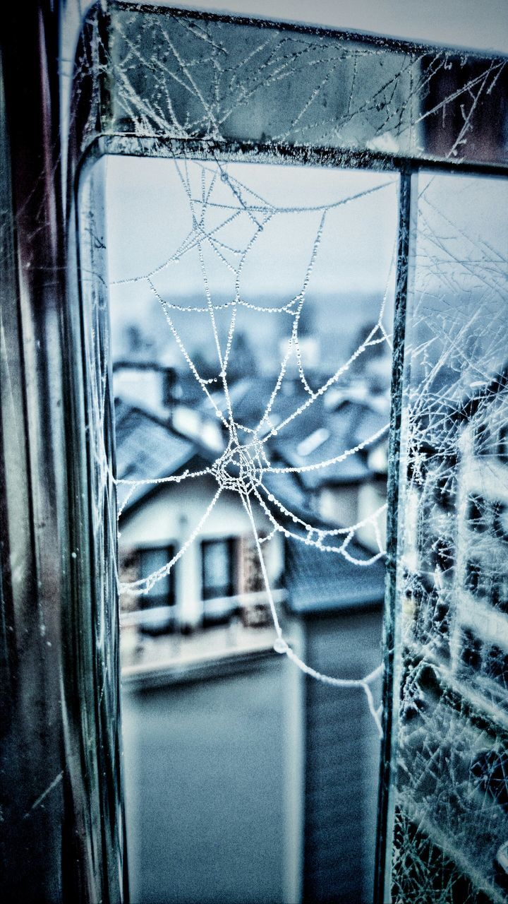 Close-Up Of Frozen Spider Web On Window