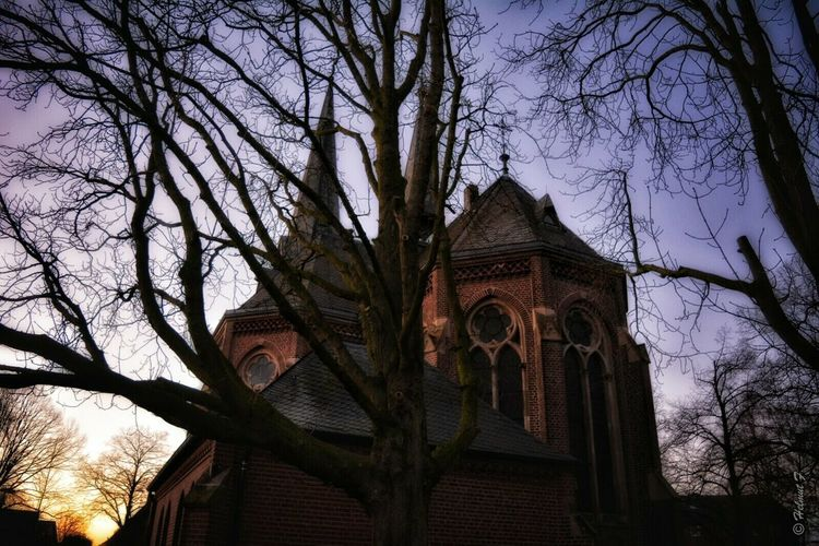 Church Tree Silhouette Tree Trunk Trees Sunset Sunset_collection Eye4photography  Taking Photos Good Evening Bockert ,Viersen , Germany Old Buildings Light And Shadow At The Sunset