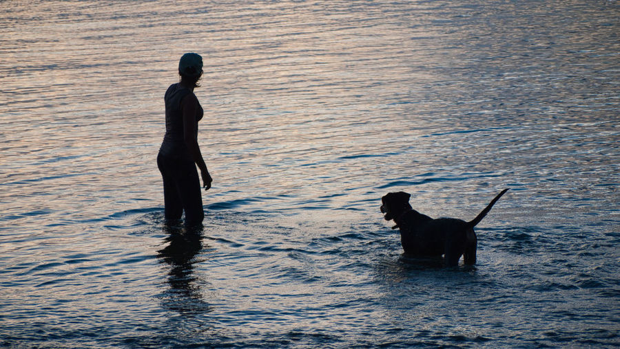 Sunset with best friend Adult Animal Themes Ankle Deep In Water Day Dog Domestic Animals Full Length Lifestyles Mammal Nature One Animal One Person Outdoors People Pets Real People Rear View Rippled Sea Silhouette Sunset Swimming Water Waterfront EyeEmNewHere