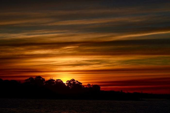Sunset Silhouette Tranquil Scene Tree Scenics Tranquility Beauty In Nature Landscape Sky Nature Orange Color Idyllic Atmosphere Cloud - Sky Dramatic Sky Majestic Atmospheric Mood Cloud Non-urban Scene Moody Sky