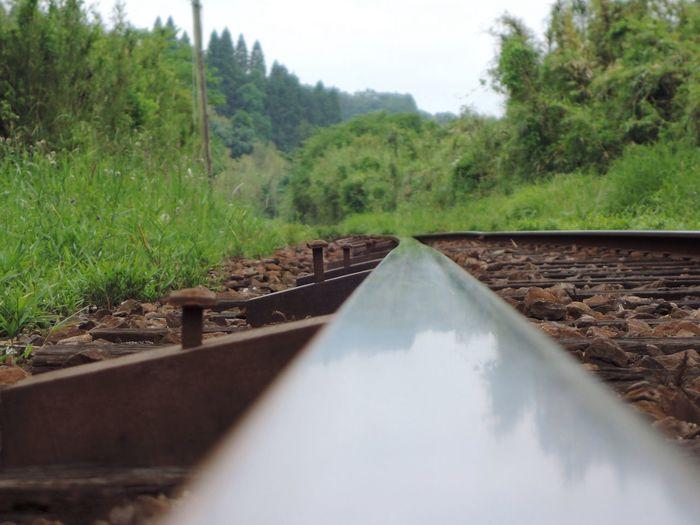 おつかれさま。 NikonP330 小湊鉄道