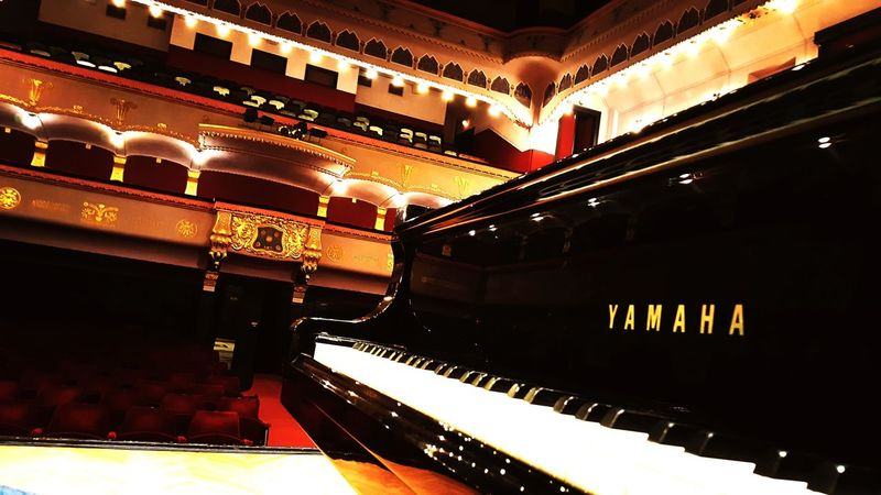 Ready for the recital! Transylvania. Stage Theater Indoors  Arts Culture And Entertainment Concert Hall  Auditorium Theatrical Performance History Stage - Performance Space Performing Arts Event No People Architecture Piano Performance Art Classical Music Transylvania Targu Mures Palace Of Culture