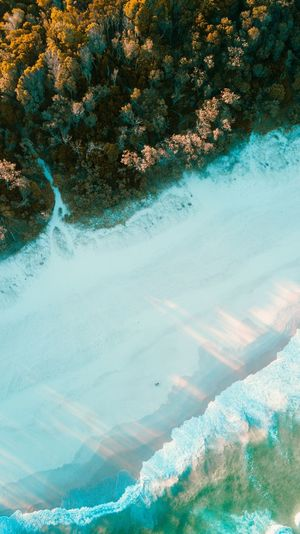 Sea and mountain Blue Nature Queensland Beach DJI Mavic Pro Water Day Nature No People Beauty In Nature Plant Tree High Angle View Tranquility Tranquil Scene Scenics - Nature Land Blue Growth Outdoors Sunlight Sea Green Color Beach
